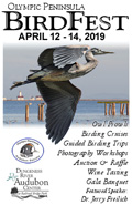 Olympic Peninsula BirdFest Apr 10-12, 2015